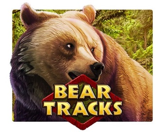 Play Bear Tracks