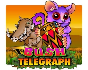 Oyun Bush Telegraph