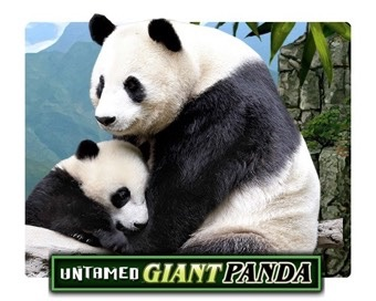 Spill Untamed Giant Panda