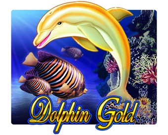 Play Dolphin Gold