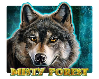 Play Misty Forest