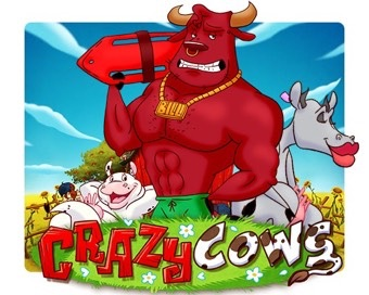 Oyun Crazy Cows